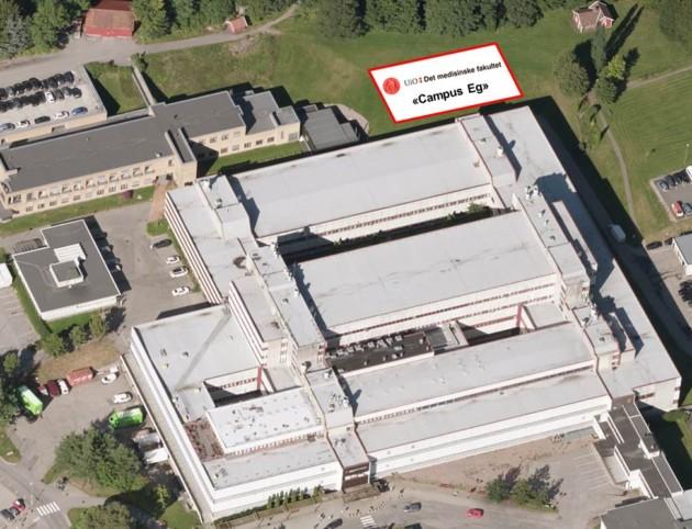 Campus Eg for utdanning av leger på Agder – en lenkesamling